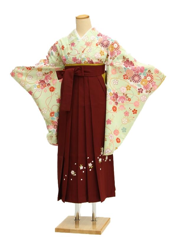 小学生卒業式袴レンタル(女の子)AR0035