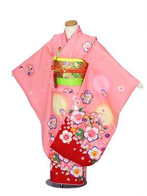 七五三(7才女帯)ピンク色、赤、桜、花26