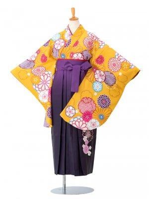 卒業袴0015 黄色地に雪輪と菊 袴紫ぼかし刺繍