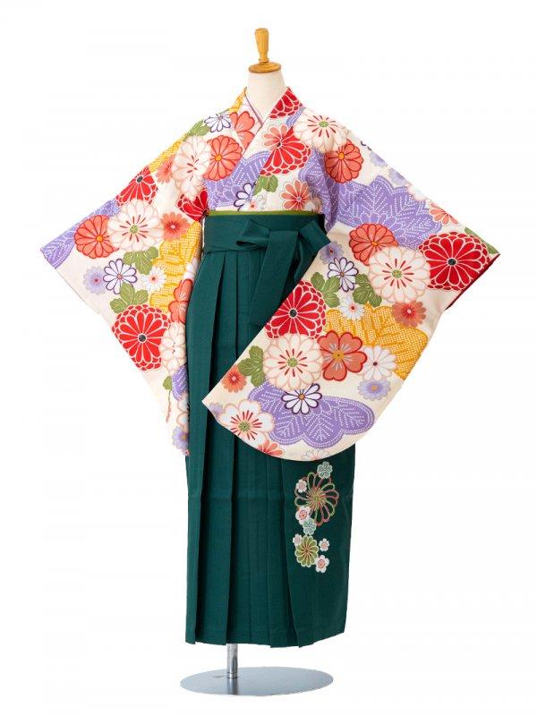 卒業袴0013 クリーム地に菊と菊の葉 袴緑刺繍