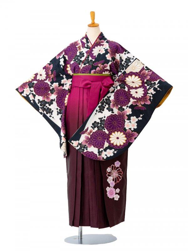 卒業袴0018  黒地に紫の菊と梅 袴えんじぼかし刺繍