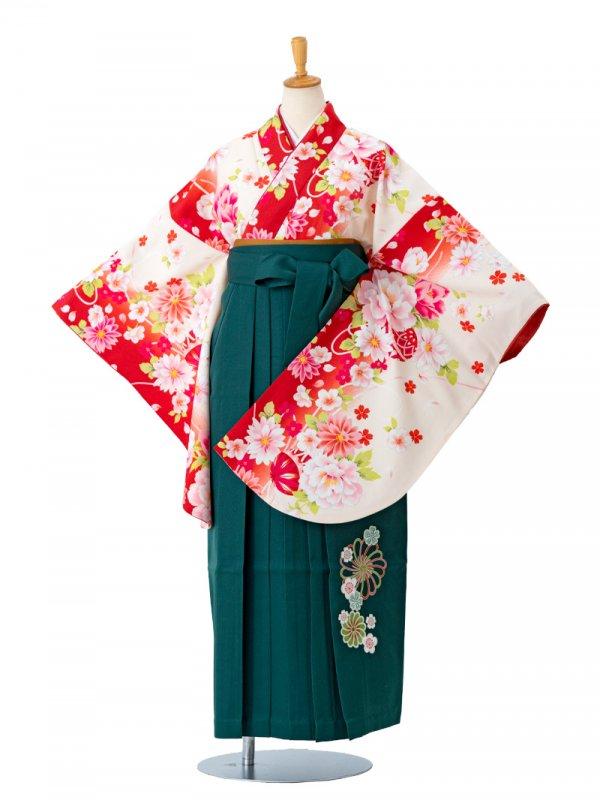 卒業袴0029  クリーム地に赤ぼかし牡丹と鞠 袴緑刺繍