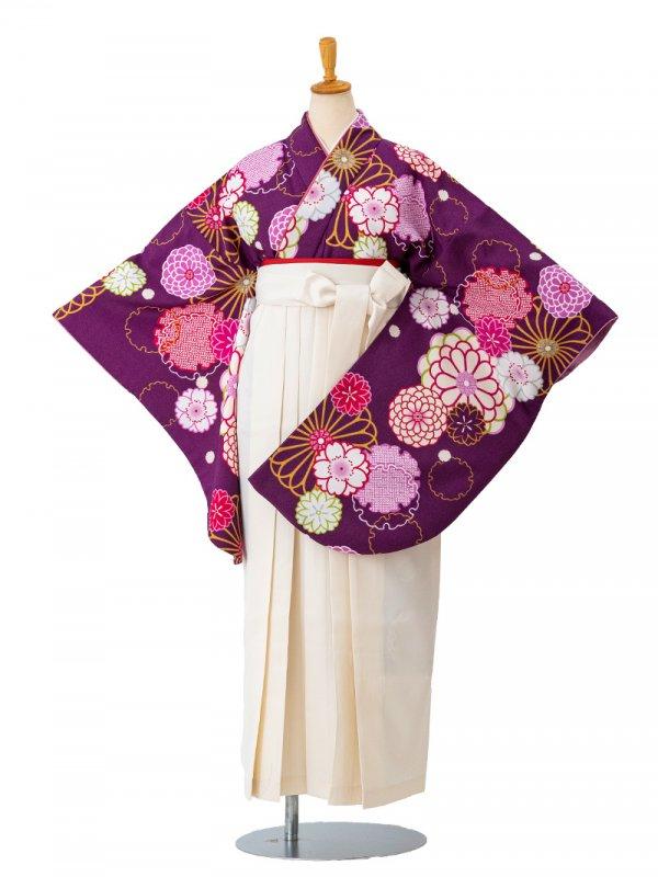 卒業袴0016 紫地に雪輪と菊 袴白