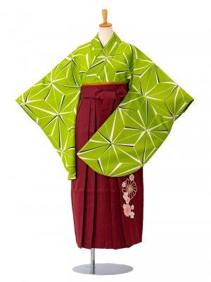 卒業袴0001麻の葉緑 袴えんじ刺繍