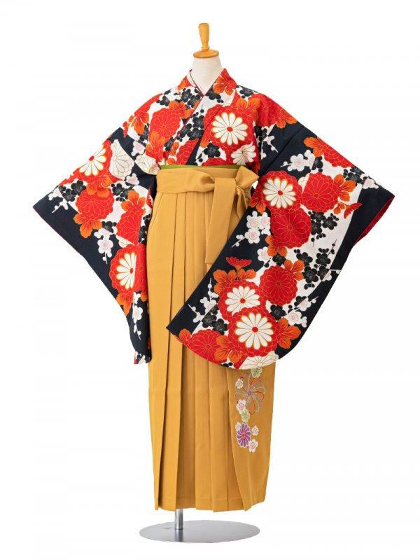 卒業袴0017  黒地に赤い菊と梅 袴黄色刺繍