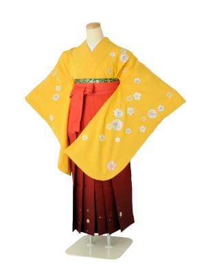 小学生卒業式袴女児c110からし桜花紋×レッド桜