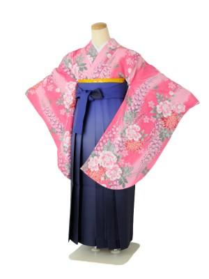 小学生卒業式袴女児c267ピンク藤に菊×ブルーぼかし