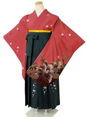 小学生卒業式袴女児c148無地赤刺繍×グリーンぼかし