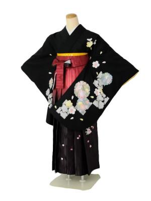 小学生卒業式袴女児c104黒花輪桜×赤絣ぼかし桜