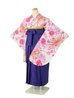 小学生卒業式袴女児c102Kansai白地に菊×市松パープル