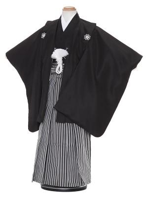 七五三レンタル(5歳男袴)H527 KYOMODE 黒紋付