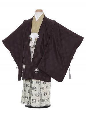 七五三レンタル(5歳男袴)H526 式部浪漫 黒地