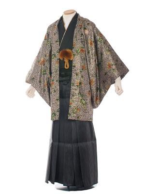 男性用袴 紋服6号 6C07