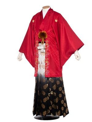 男性用袴 紋服6号赤紋付つる草刺繍/6R01