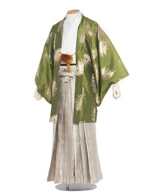 男性用袴 紋服6号 深黄緑 孔雀羽根柄/6X26