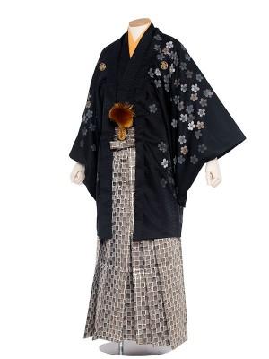 男性用袴 紋服6号桜吹雪/6B02