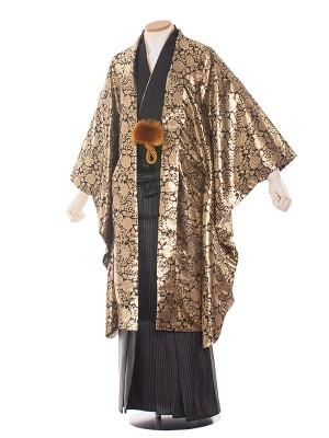 【オリジナル】男性用袴 紋服6号 6C14