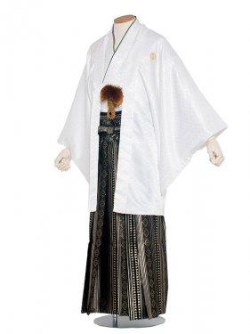 男性用袴 紋服6号白/6H00