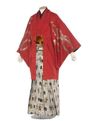 男性用袴 紋服6号風神雷神/6R02