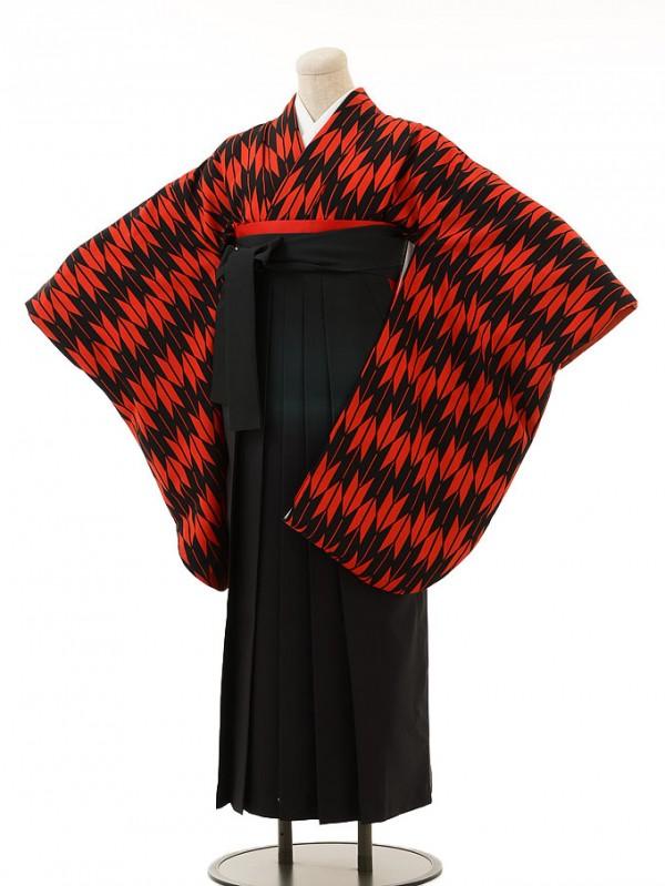 赤黒矢絣×グリーンぼかし袴