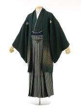 男性用袴men0032グリーンラメ紋付×グリーンラメ縞(LL