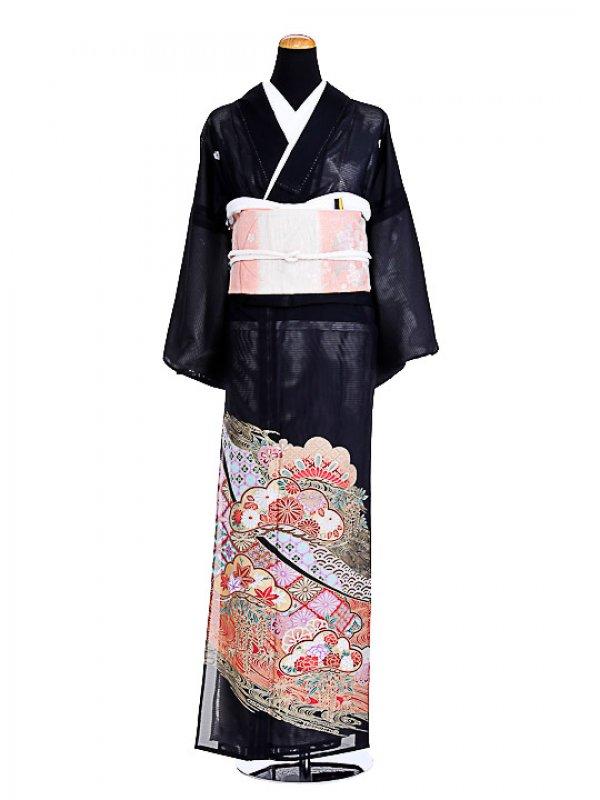 夏黒留袖tcr006松紋