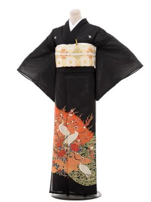 夏黒留袖tcr094鶴梅牡丹