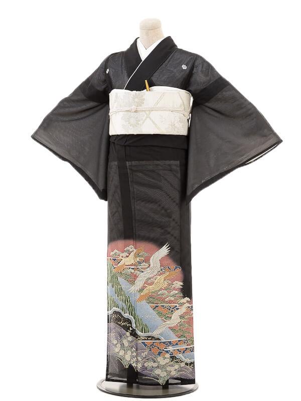 夏黒留袖tcr067山賀に金鶴