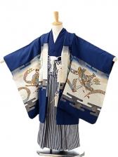 七五三(5歳男袴)sftm193紺地に鷹兜/紺縦縞