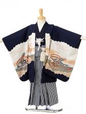 七五三(5歳男袴)sftm166濃紺地鷹巻物/紺縦