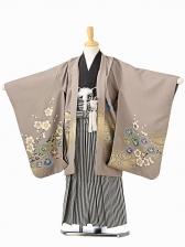 七五三(5歳男袴)sftm101グレー地梅兜/黒縦縞