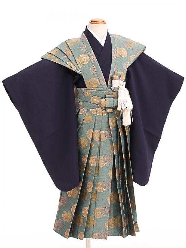 七五三(5歳男袴)sftm298菊紋裃