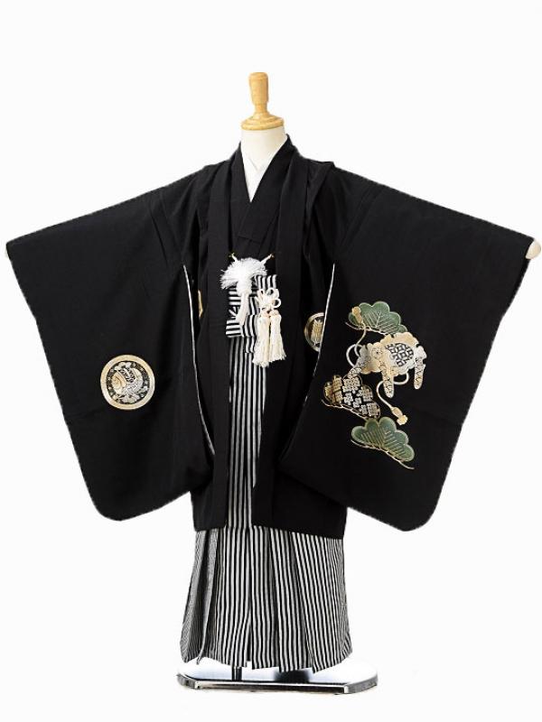 七五三(5歳男袴)sftm099黒地箔ワシ/黒仙台縦