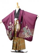 七五三(5歳男袴)sftm225紫地梅兜/蜀江紋袴
