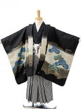 七五三(5歳男袴)sftm199黒地鷹/黒仙台縦縞