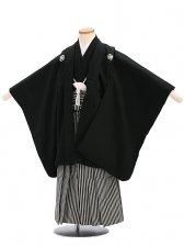 七五三(5歳男袴)sftm043黒無地/黒仙台縦縞