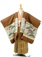 七五三(5歳男袴)sftm195茶色地鷹兜/蜀江紋