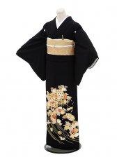 黒留袖レンタル5262貝桶刺繍