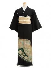 黒留袖5216グリーンぼかし鳳凰