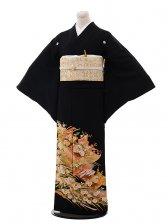 黒留袖レンタル5329扇に熨斗と花