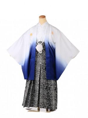 ジュニア男の子 羽織袴 白×青 豹柄 1341