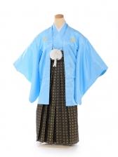 ジュニア 男 羽織 水色菊菱 黒金若松袴