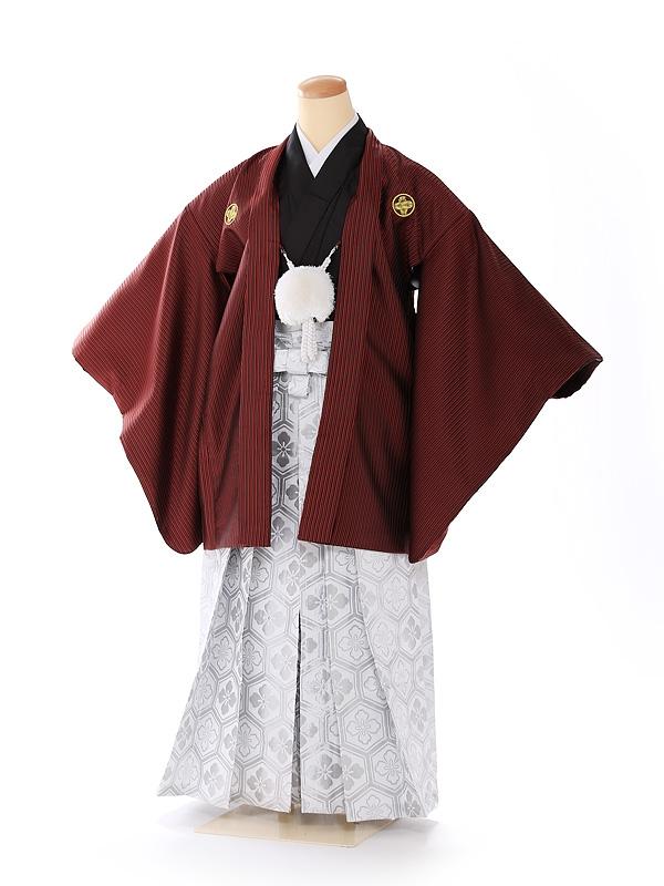 ジュニア男の子 羽織袴 ストライプ 赤×白 1339