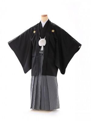 男の子 紋付袴 13歳 黒 縞 FC1323