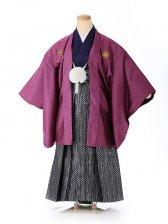 ジュニア男の子 紋付き袴 紫ドット 1331