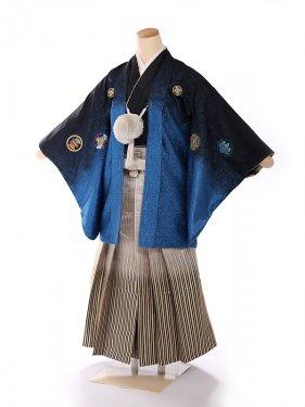 ジュニア男の子紋付き織美桐 青×金ー 1312
