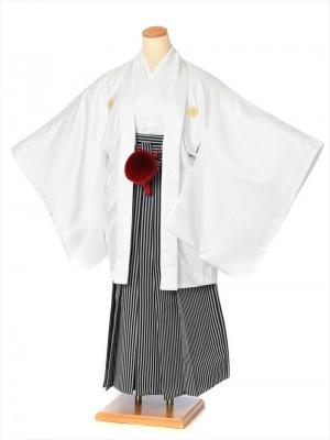 ジュニア用紋付袴セットレンタル8AQM06