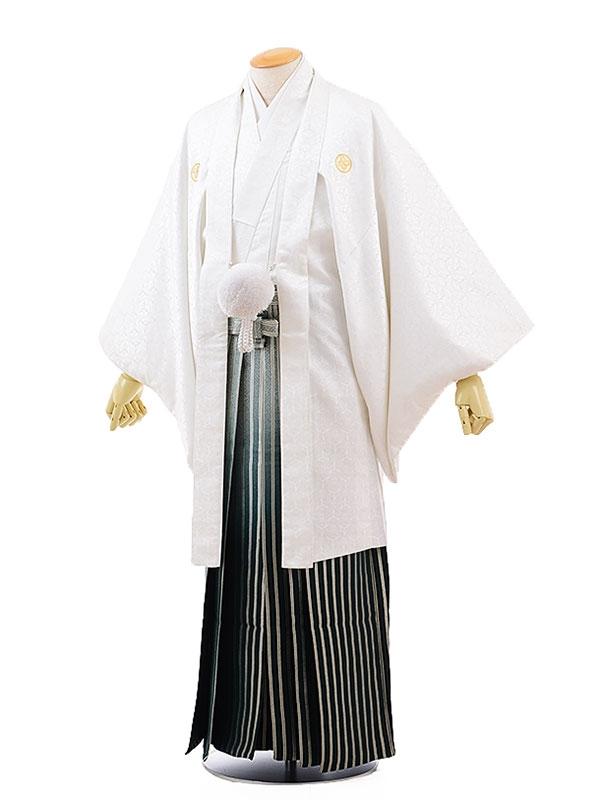 男性用袴レンタル2070紋付白地向鶴×グリーンぼかし小石柄