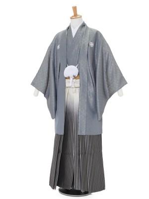 男性用袴レンタル2081紋付 グレー金菱杉×白黒シルバー縞