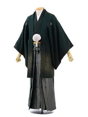 男性用袴レンタル2049紋付グリーン吹雪×グリーン縞